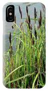 Grasses With Seed Heads IPhone Case
