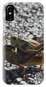 Grasshoper Love IPhone Case