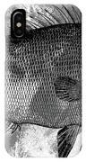 Gray Fish IPhone X Case