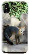 Gray Fox 4 IPhone Case