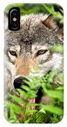 Gray Wolf In The Woods IPhone Case