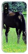 Grazing Horse In The Flowers IPhone Case
