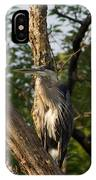 Great Blue 2 IPhone Case