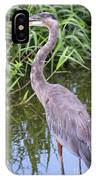 Great Blue Heron Closeup IPhone Case