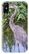 Great Blue Heron Closeup IPhone Case