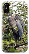 Great Blue Heron In A Tree IPhone Case