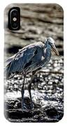 Great Blue Heron In Galapagos IPhone Case