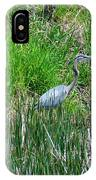 Great Blue Heron Series 1 Of 10 IPhone Case