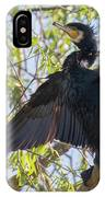 Great Cormorant - High In The Tree IPhone Case