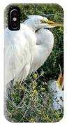 Great Egret Mom And Babies IPhone Case