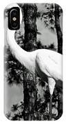Great Heron IPhone Case