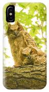 Great Horned Owl Fledglings IPhone Case