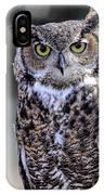 Great Horned Owl IIi IPhone Case