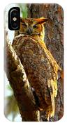Great Horned Owl Wink IPhone Case