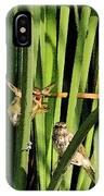 Great Reed Warbler IPhone Case