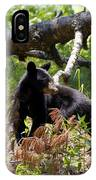 Great Smoky Mountain Bear IPhone Case