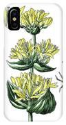 great yellow gentian, Gentiana lutea IPhone Case