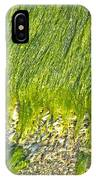 Green Algae On Rock IPhone Case