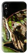 Green Checkered Skipper IPhone Case
