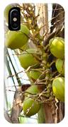 Green Coconut IPhone Case