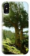 Green Desert IPhone Case