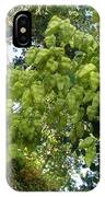 Green Fizalis Plant IPhone Case
