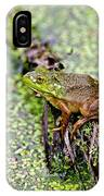 Green Frog On Log IPhone Case