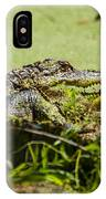 Green Gator IPhone Case