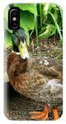 Green Head Mallard Duck 2 IPhone Case