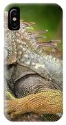 Green Iguana Costa Rica IPhone Case