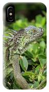 Green Iguana Vertical IPhone Case