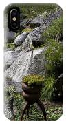 Green In Rock Garden IPhone Case