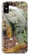 Green Inguana IPhone Case