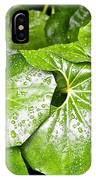 Green Leaves Longwood Garden IPhone Case