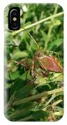 Green Lynx Spider IPhone Case