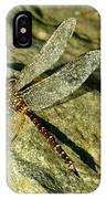 Green Spotted Dragonfly 1 IPhone Case