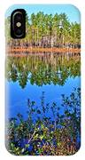 Green Swamp In December IPhone Case