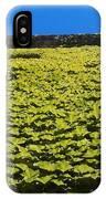 Green Wall In Saint Paul IPhone Case