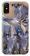 Grevy Zebra Party  7528 IPhone Case