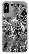 Grevy Zebra Party  7528bw IPhone Case