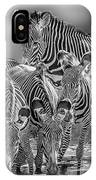 Grevy Zebra Party  7528bwc IPhone Case