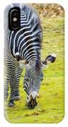 Grevys Zebra Left IPhone Case