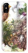 Grey Crown Rosy Finch IPhone Case