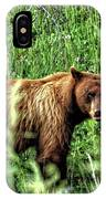 Grizzly Bear 2 IPhone Case