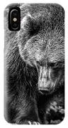 Grizzly Bear In Black And White IPhone Case