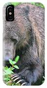 Grizzly Claws IPhone Case