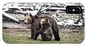 Grizzly Cub Holding Mother IPhone Case
