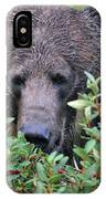 Grizzly In The Berry Bushes IPhone Case