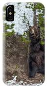 Grizzly Shaking A Tree IPhone Case