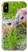 Groundhog Mother Love IPhone Case